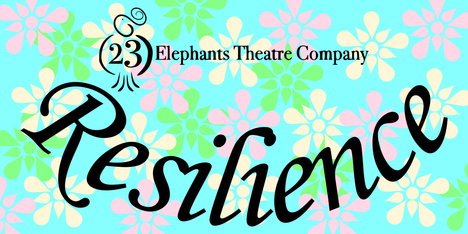 23 Elephants Theatre Company