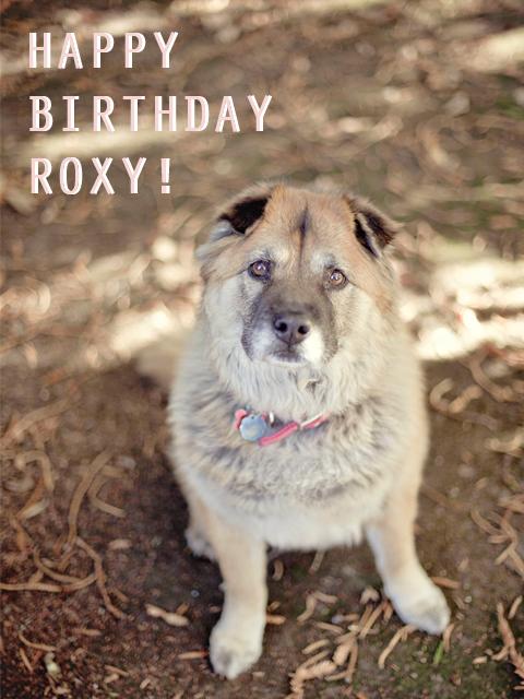 roxy_1
