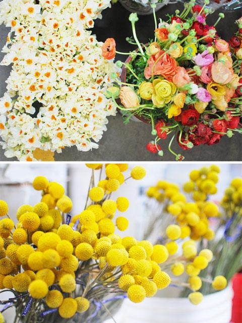 flowers_4