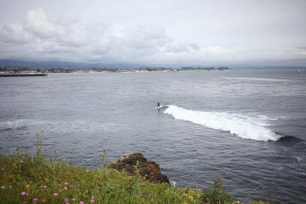 J for Jamie Blog  | Santa Cruz Dog Beach