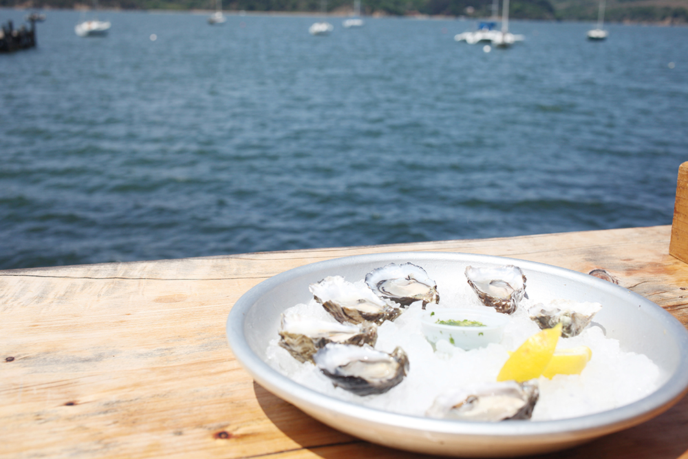 J for Jamie Blog | Tomales Bay Weekend