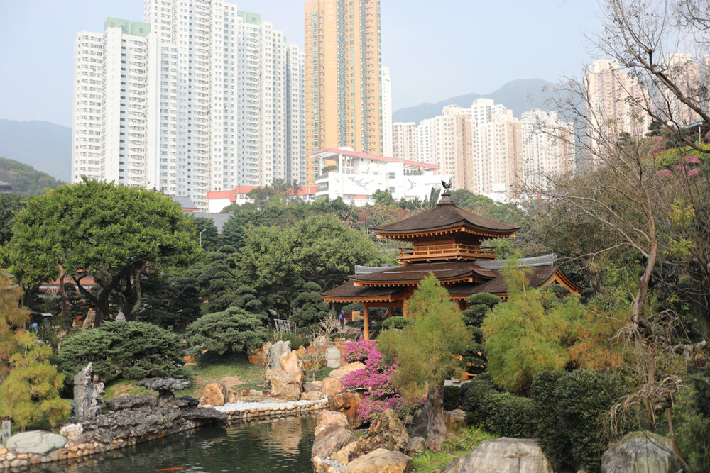 J for Jamie Blog | Hong Kong Chi Lin Nunnery