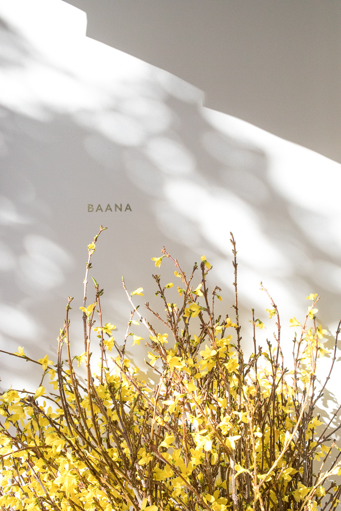 Baana San Francisco | J for Jamie Blog