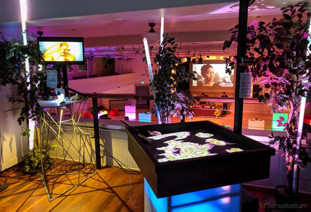 Sandbox of Life & Microscopia Interactive Art Installation Company Sensebellum Seattle 2 copy.jpg