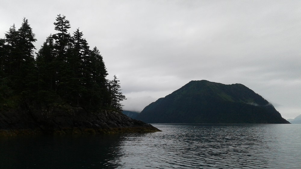 Anchorages are many and varied in the Kenai Fjords National Park.