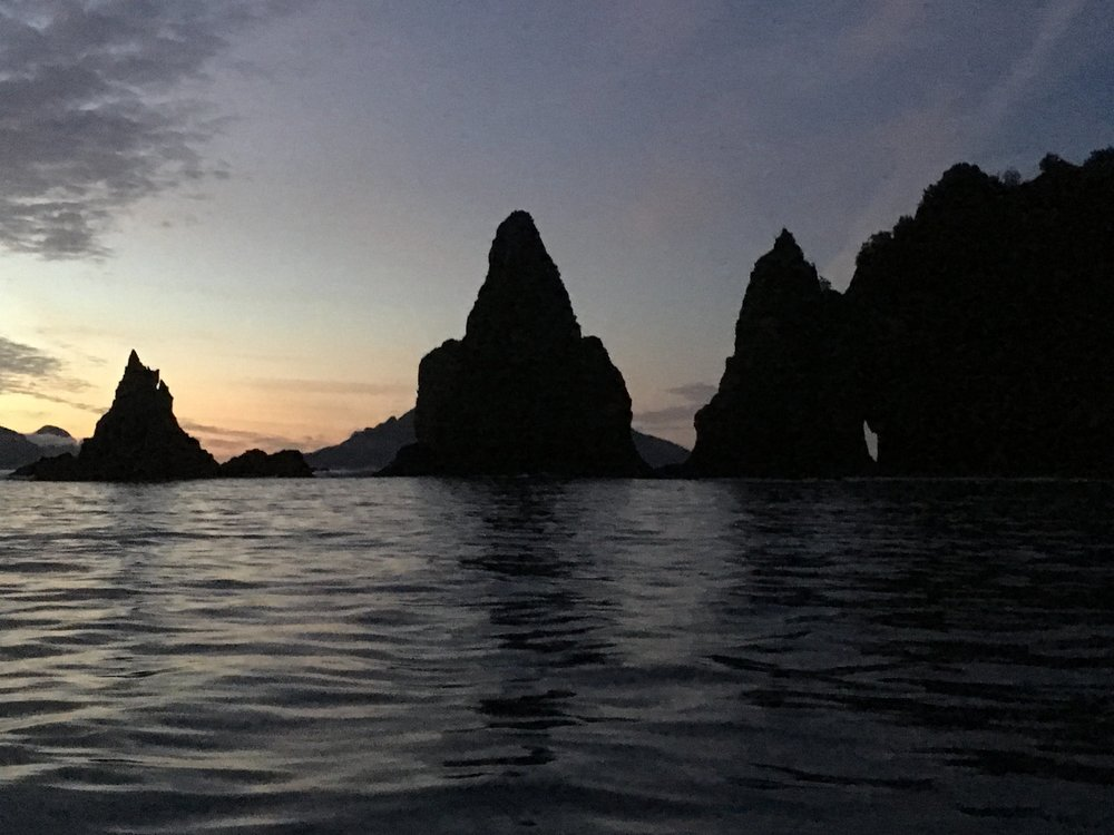 Bulldog Cove at the edge of Resurrection Bay feels like the land that time forgot.