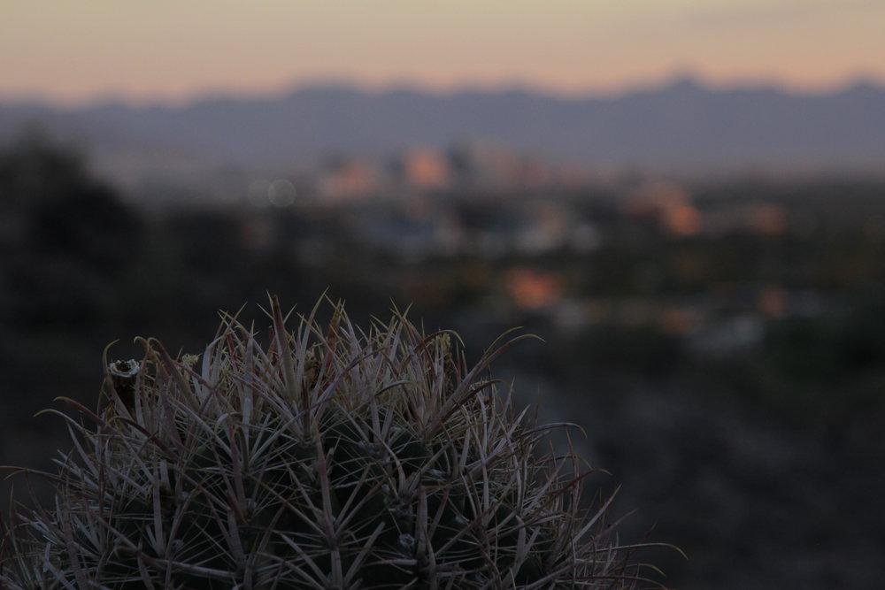 Desert Overlooking the Phoenix Skyline. Photo by Brandon Salaz/Samsara Studios.