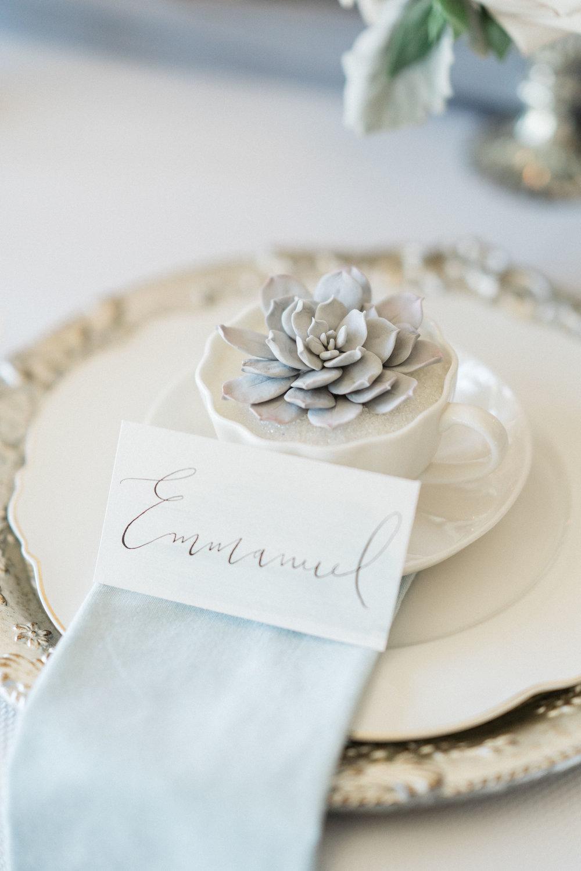Arlington_Estates_Wedding_Photos-Rhythm_Photography-151.jpg
