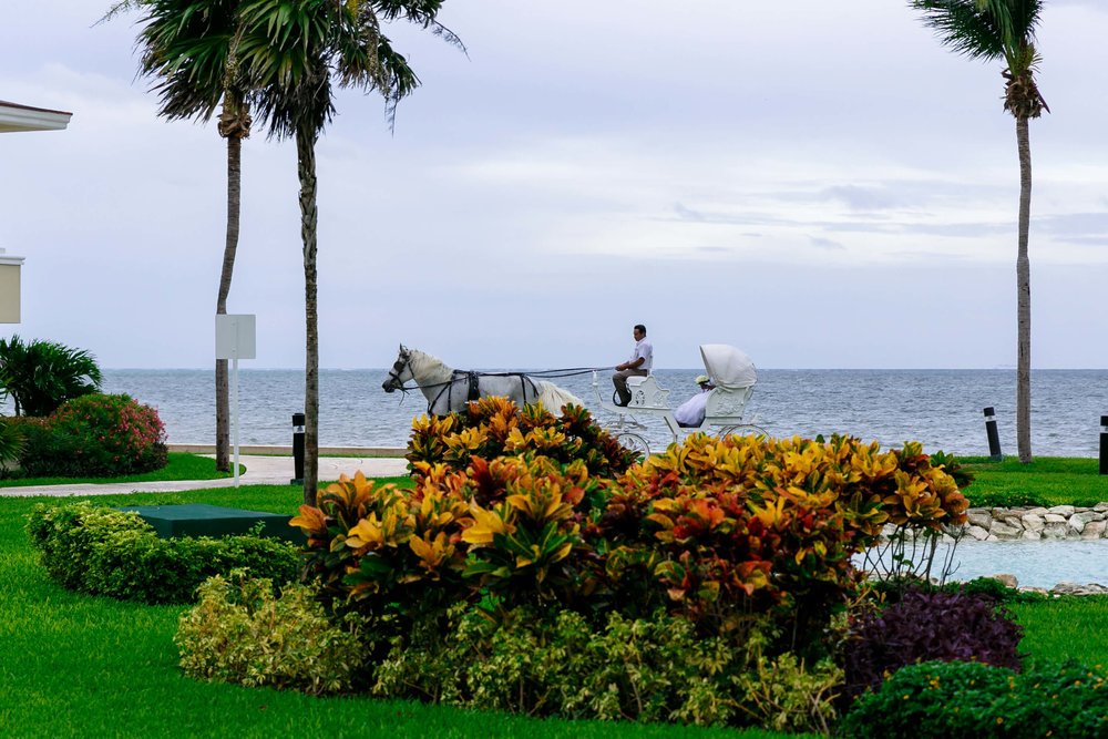 tressa-how-to-plan-a-destination-wedding-in-cancun-mexico-moon-palace-resort-black-destination-bride-destiland-desti-guide-to-destination-weddings-beach-wedding-horse-carriage-1.jpg