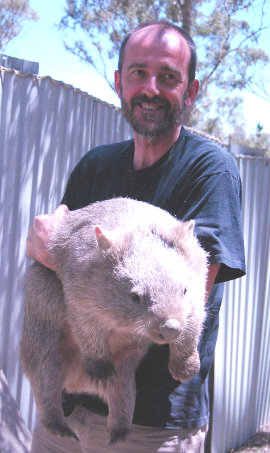 After leaving the wombatorium Spud was transferred to another care facility to be buddied up with another wombat for his journey back into the wild - here he is with Warwick at a heft 20kgs (a few months before his release).