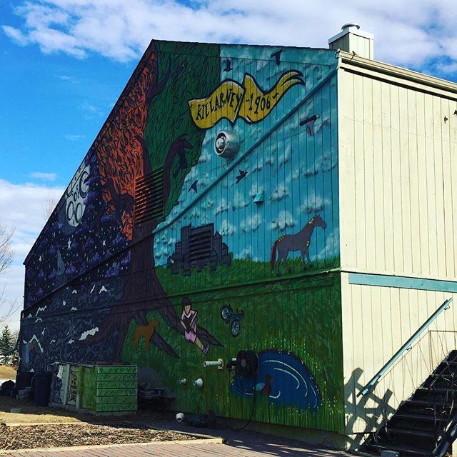 The mural on our hall is courtesy of Killarney artist Melissa Centofanti.
