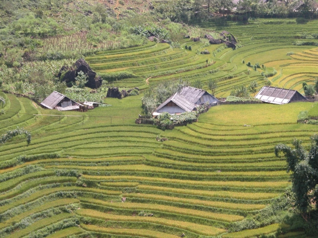 Vietnam_Sapa_1.jpg