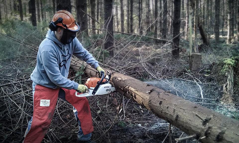 Photo credit: Evergreen West Sound Mike Vandergrift - chainsaw safety at Port Gamble
