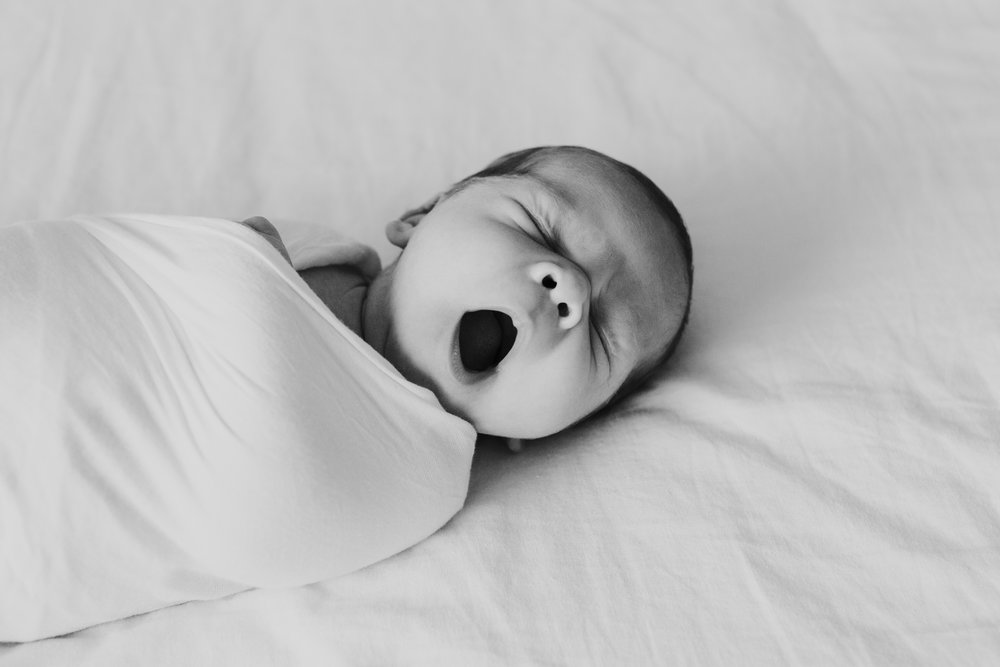 baby parker | newborn