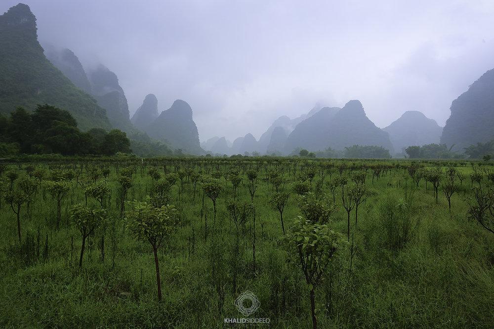 Yangshuo, China - يانغشوا، الصين