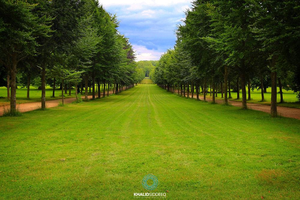 Versailles Garden, France - حديقة ڤراساي، فرنسا