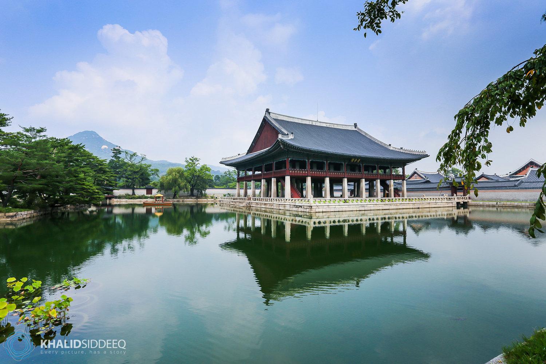 135190d8735a2 قبل ذهابك إلى كوريا الجنوبية — خالد صديق، مصور، رحالة