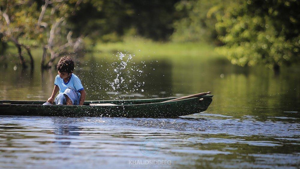 Amazonas 4.jpg