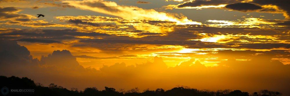 Amazonas 9.jpg