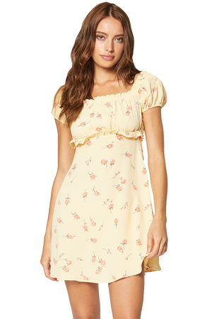 e26fccee1cdf9 Lou Floral Mini Dress ...