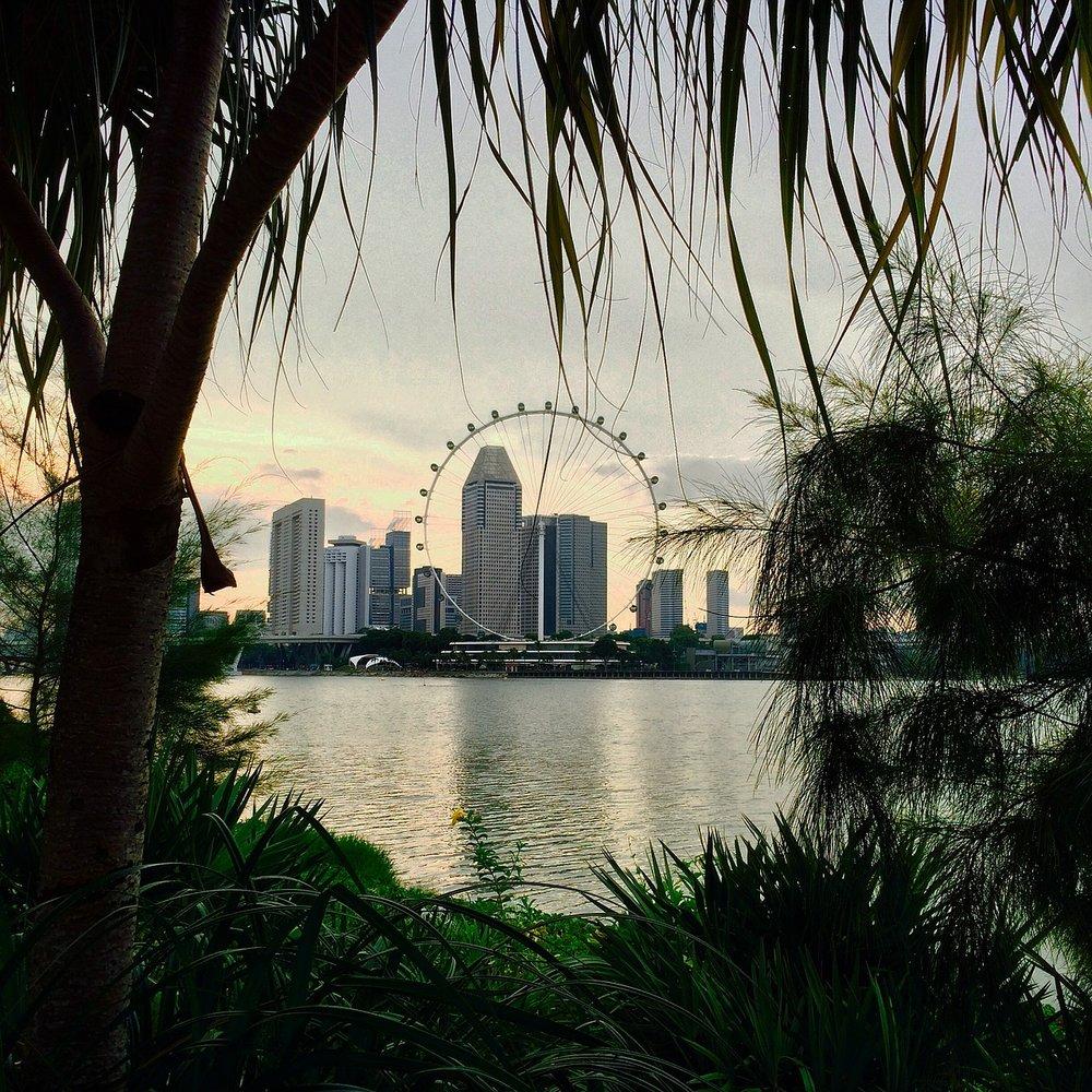 singapore11.jpg