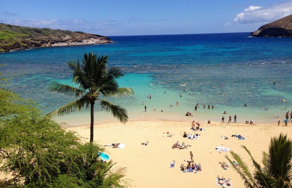 Hawaii website image.jpg