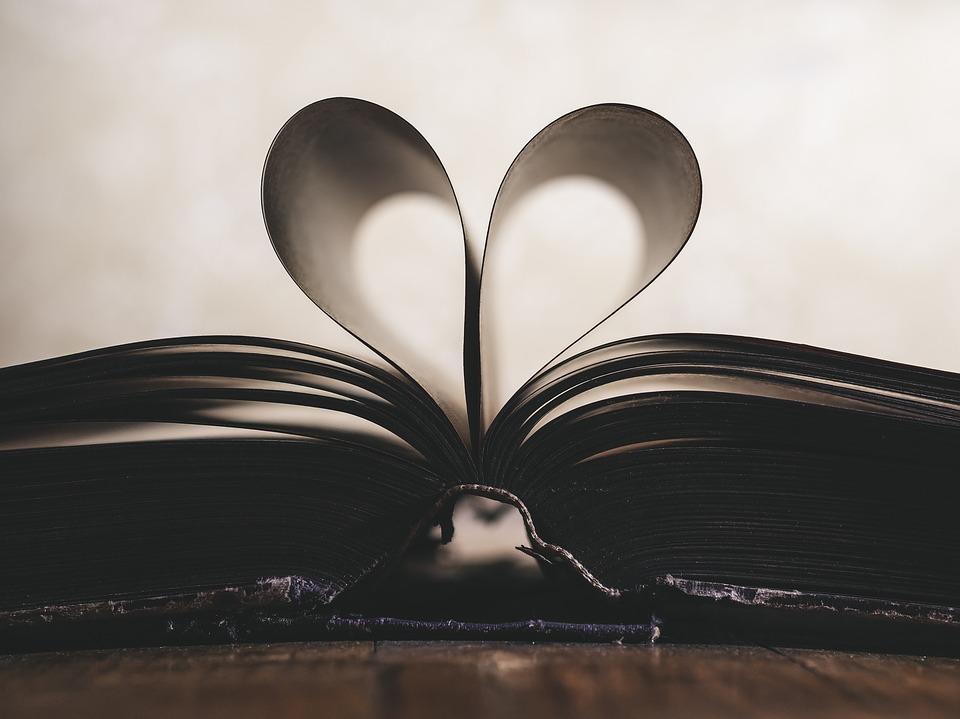 .... Etwas gemeinsam Lesen, zusammen Wissen und Weisheit aufbauen, gehört zu reifen Beziehungen .. Reading something together, growing in knowledge and wisdom together, is a wonderful way for a relationship to grow. ....