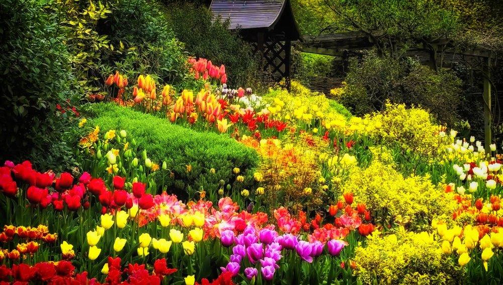 Freuen wir uns an den schönen Blumen und Früchten, die unser Erziehungsgarten hervorbringt... Gute Erziehungsarbeit bringt Lebensfreude !