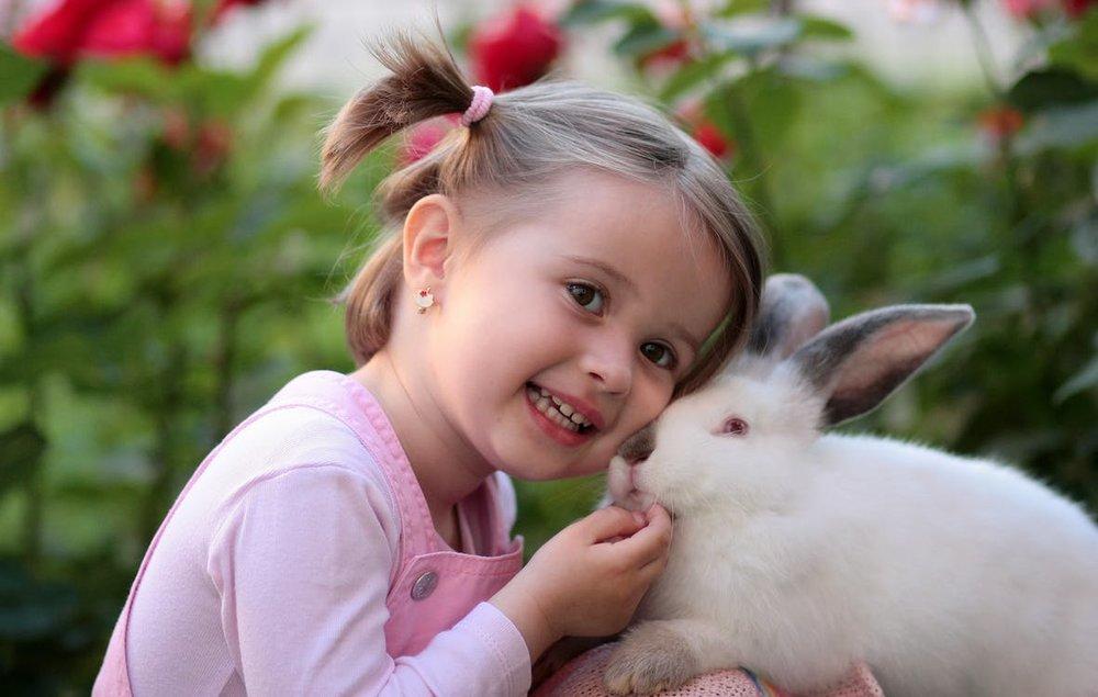 Wer seinem Kind ein Tier schenkt, der kann damit einen grossen Vorteil entwickeln lassen. Tiere, die auf die Zuneigung des Kindes reagieren können, helfen mit, deren emotionalen Tank zu füllen. Mit einem Tier ist auch die Pflegeverantwortung verbunden, mit der das Kind unter kundiger Anleitung einiges für seine Charakterentwicklung gutschreiben kann.