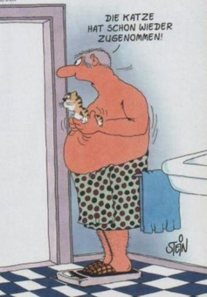 ....      ..      That cat gained weight again!!!    ....