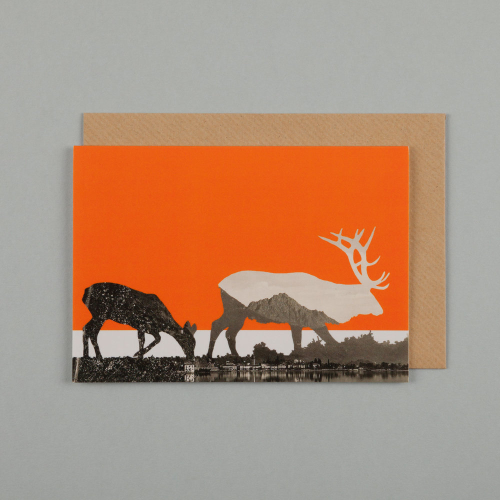 ALPINE DEER