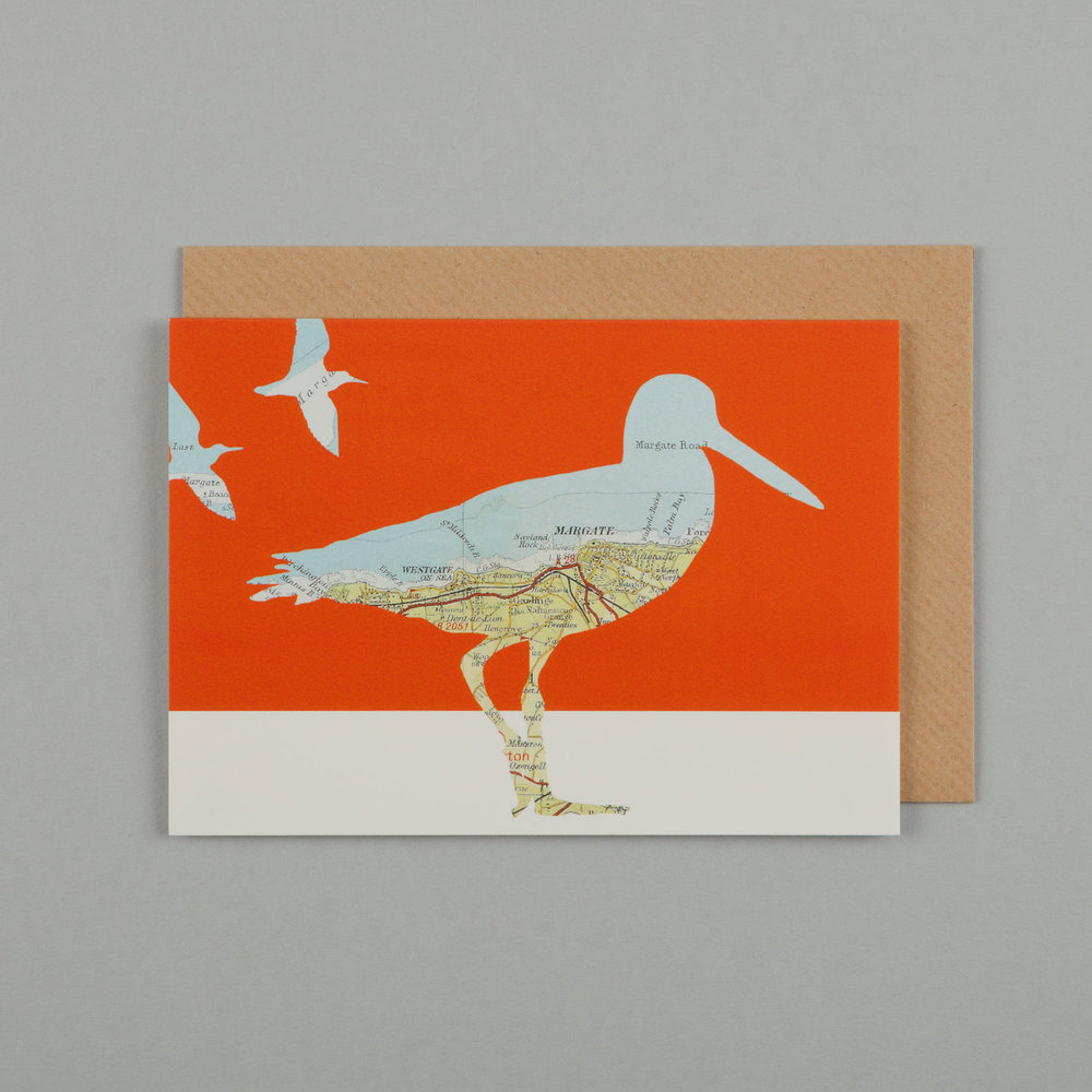 OYSTERCATCHER, BURNT ORANGE