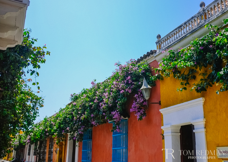 Destination+photographers+Colombia+1.jpg
