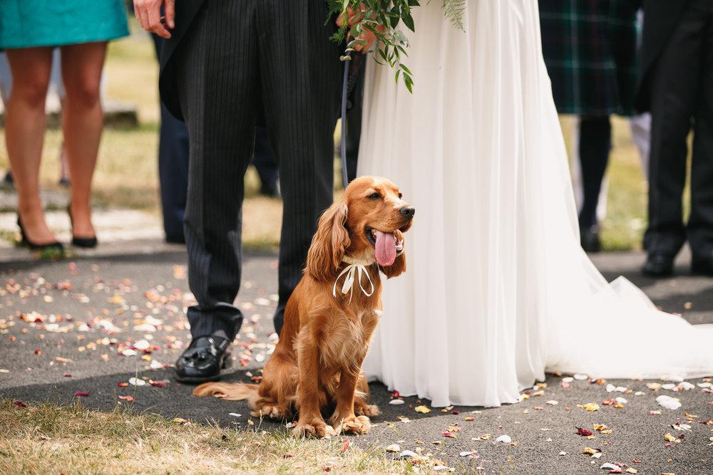 Hampshire wedding photographers 033.jpg