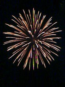 220px-Spider-Firework-Omiya-Japan.jpg