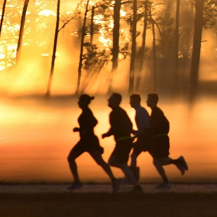 Move it, move it! Being active is crucial to optimal health.