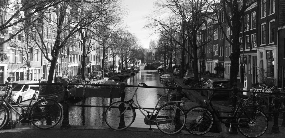 Amsterdam Bridge View