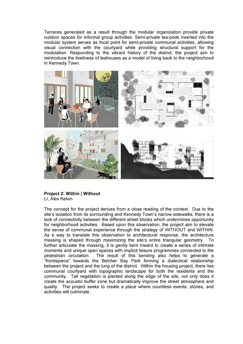 Dwellings in a Influx  City_Hwang_Rossini_UPDATED_Page_3.jpg