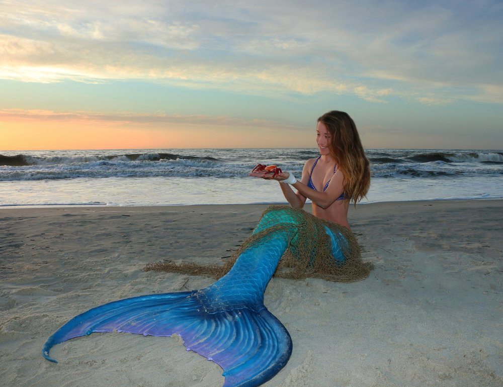 Mermaid Tours