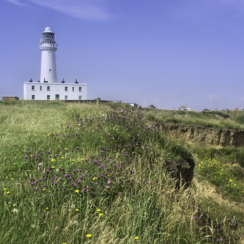 lighthouse-500x500.jpg