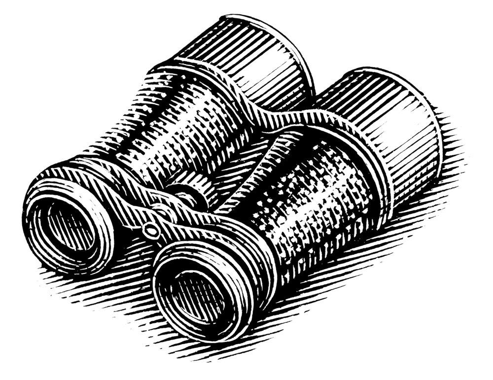 Art - Binoculars copy.jpg