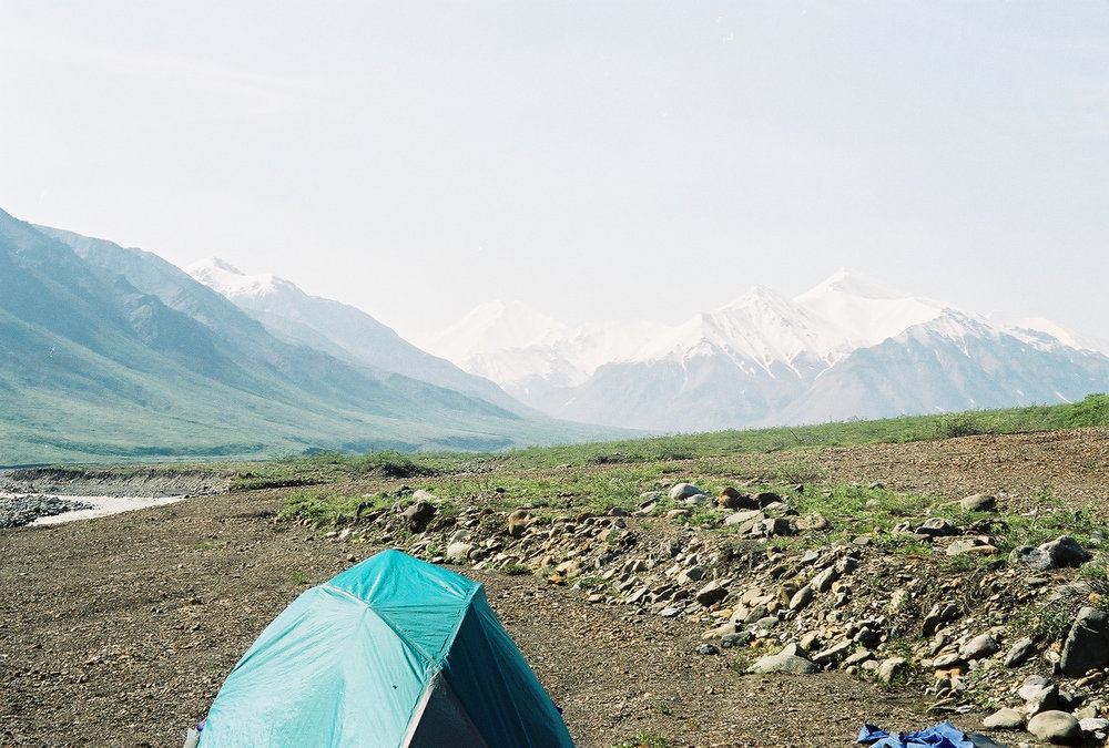 My tent in action (here in Denali)