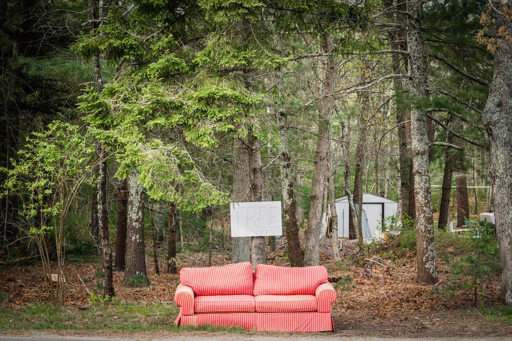 Couch In The Wild