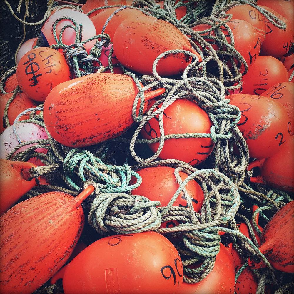 Buoy Tangle