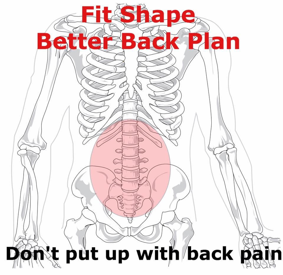 better back plan.jpg