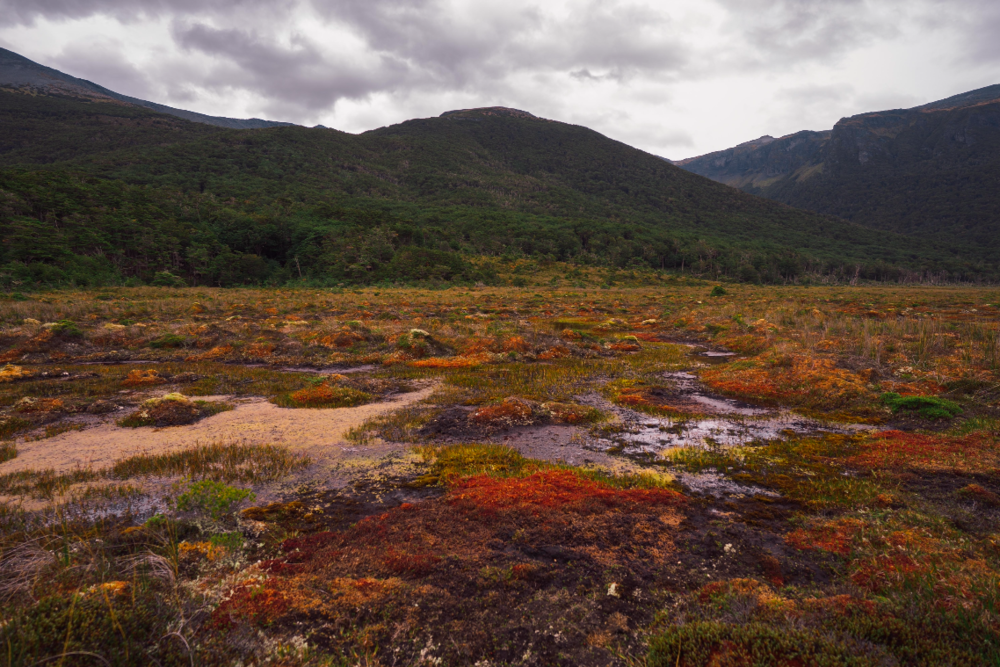 Colorful bogs, mountains covered in lush vegetation and threatening skies accompanied us along the way.