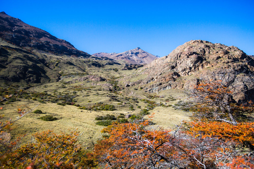 Autumn colors of the Aviles Valley -