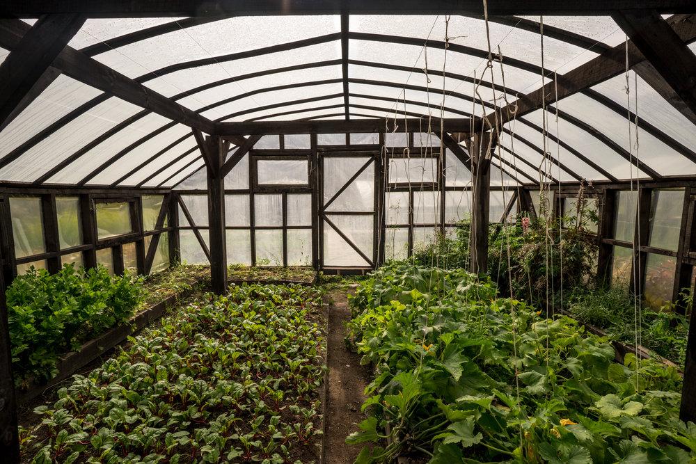 Greenhouse Patagonia Park