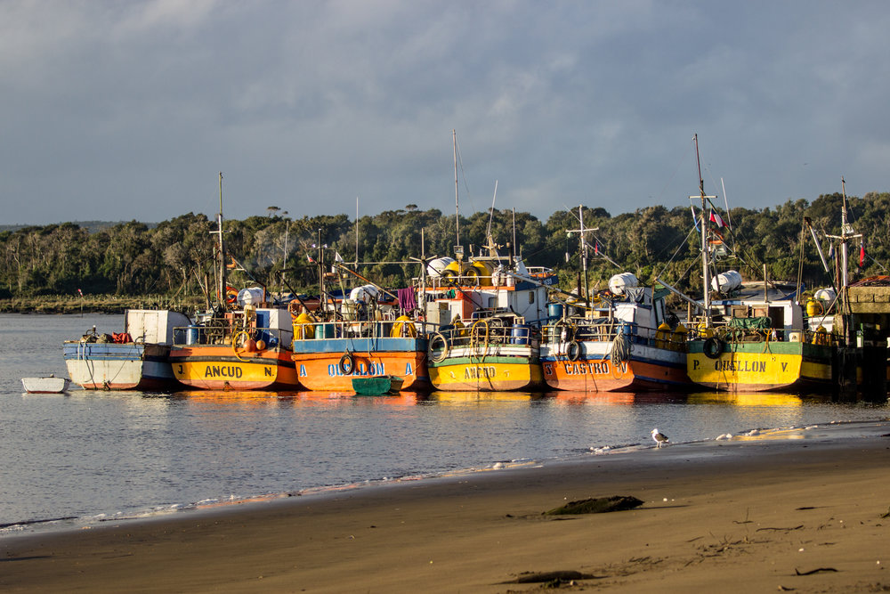 The typical boats from Chiloé. Inío is a village of fishermen.