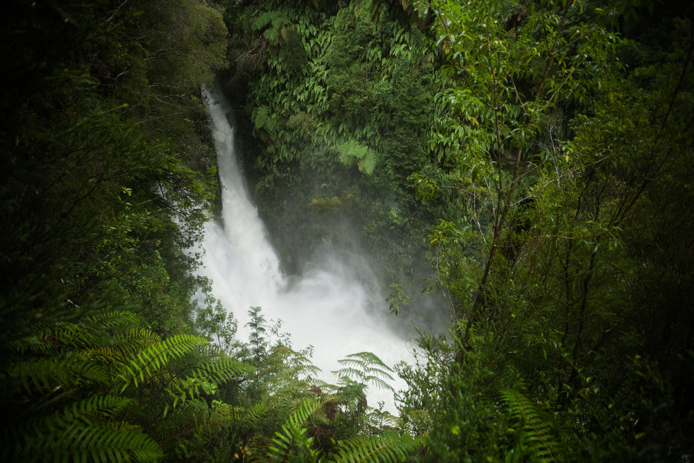 WATERFALL IN PUMALÍN - One of the many waterfalls in the future Pumalín National Park. The rain, fog, mists, and lush tree-covered mountains make for incredible photography opportunities, assuming you can keep your camera dry.